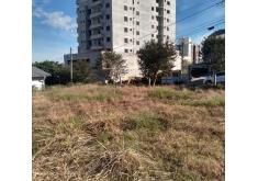 Cód. 074 Terreno Centro de SMO 1000 m² R. Chuí